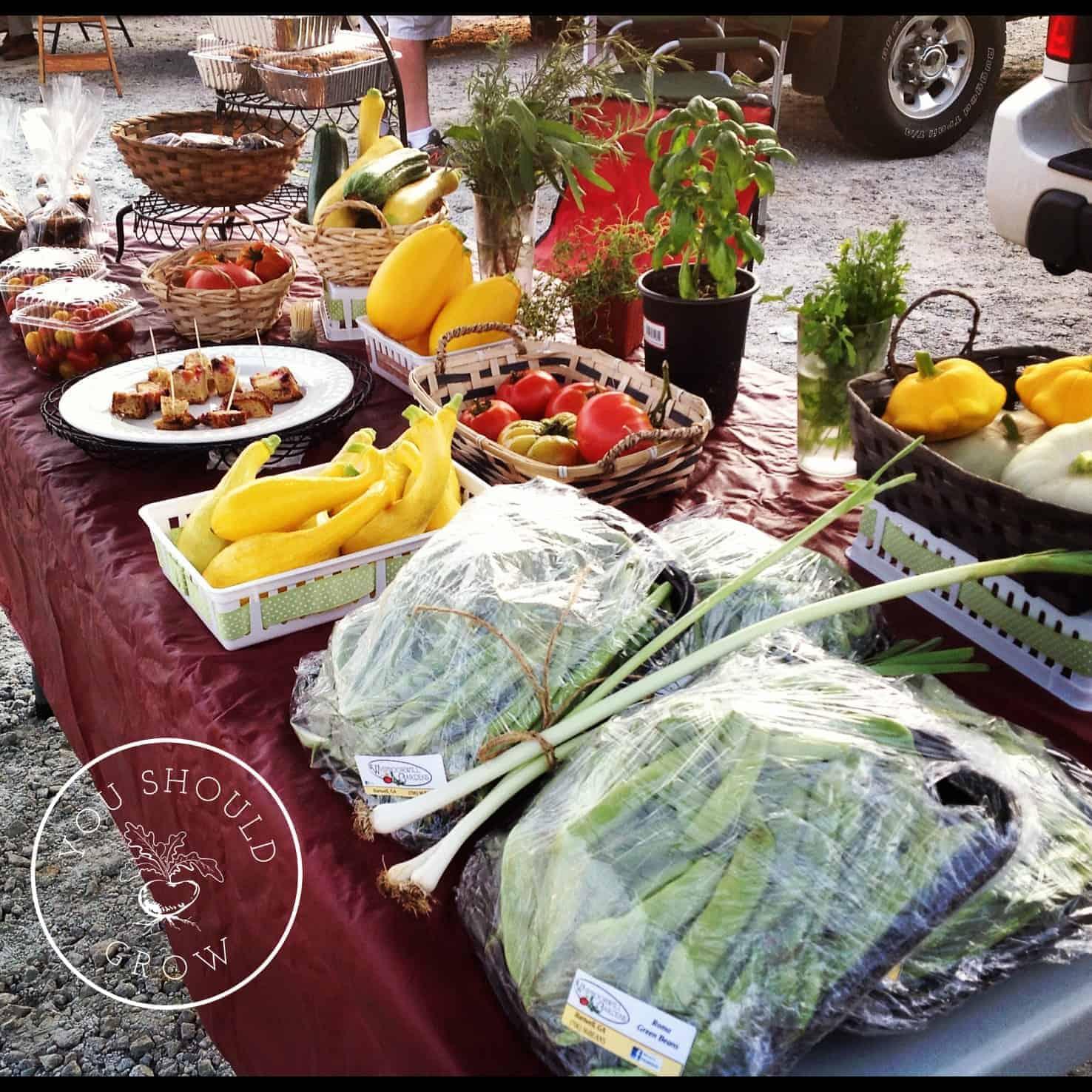 Five Vegetables For The Market Garden