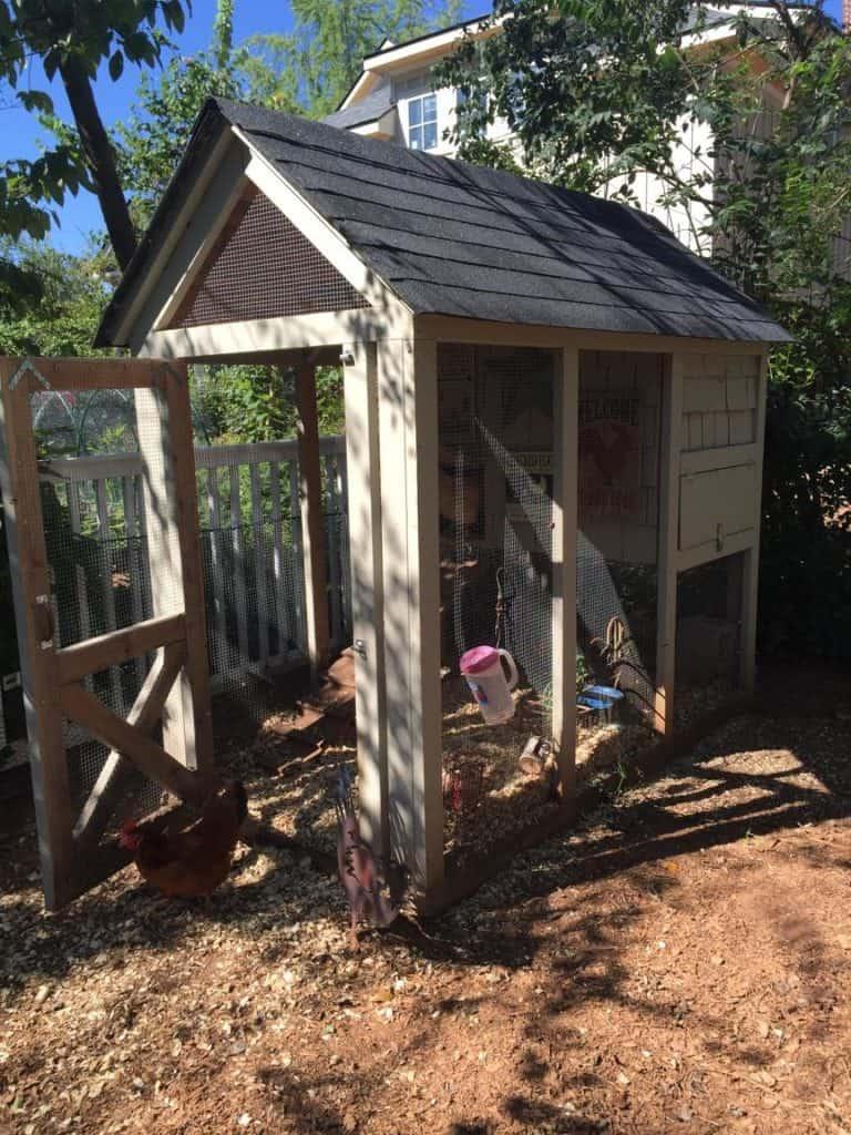 Super adorable chicken coop in Dr. Daniel's backyard.