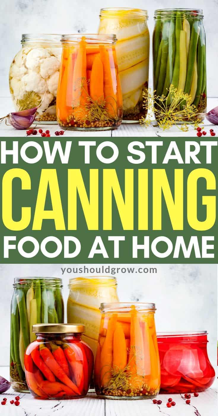Ready to learn how to can your own food? Let's take a look at some of the most basic facts and essential supplies that you'll need to get started canning at home.