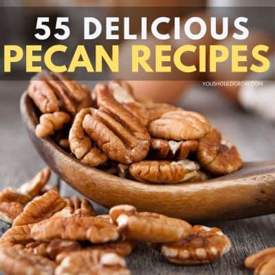 55 Sweet and Savory Pecan Recipes