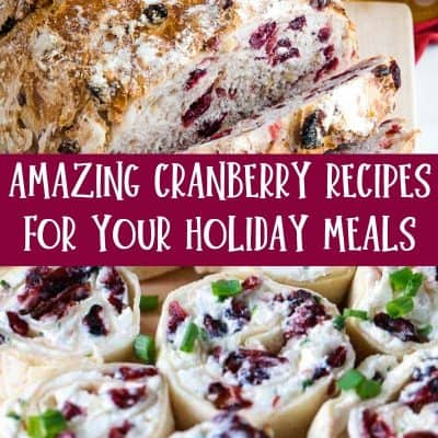 18 Amazing Cranberry Recipes For Your Holiday Meals