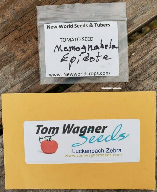 2 types of seed packets for how long do tomato seeds last