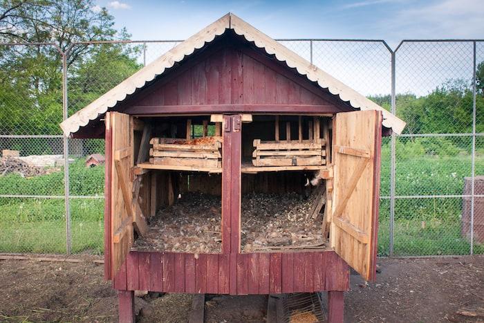 Cleaning Chicken coop deep litter method