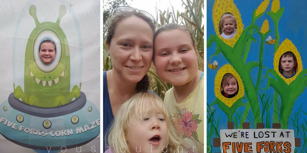Five forks corn maze photo ops