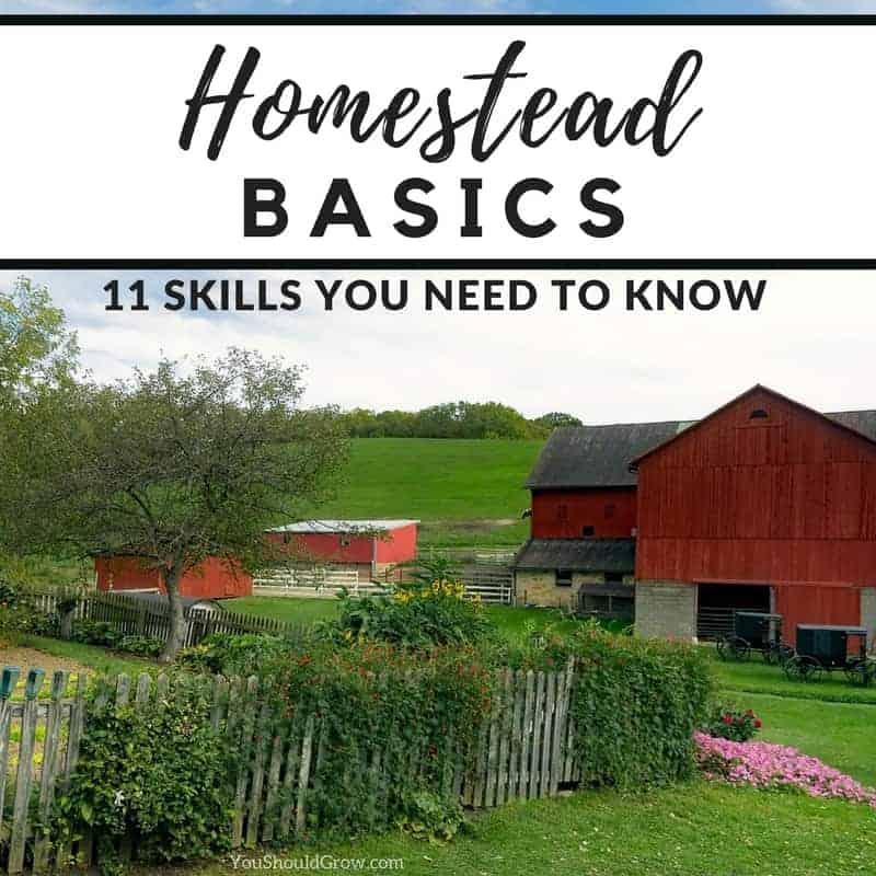 Homesteading Basics: 11 Skills You Need To Know