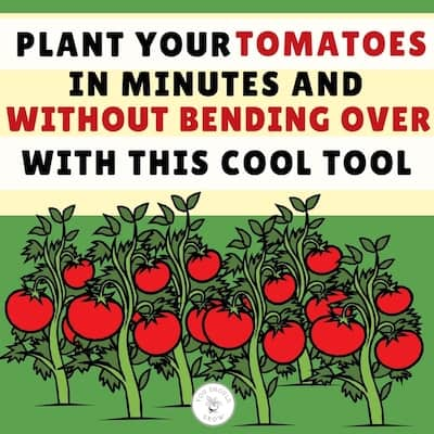 The Back Saving Planting Tool Everyone Needs!