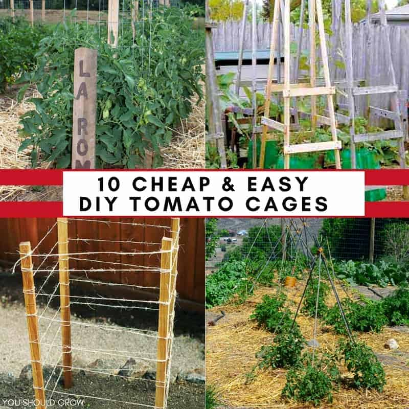 Cheap Ways To Do Your Garden: 10 Cheap & Easy Tomato Cages To DIY This Weekend