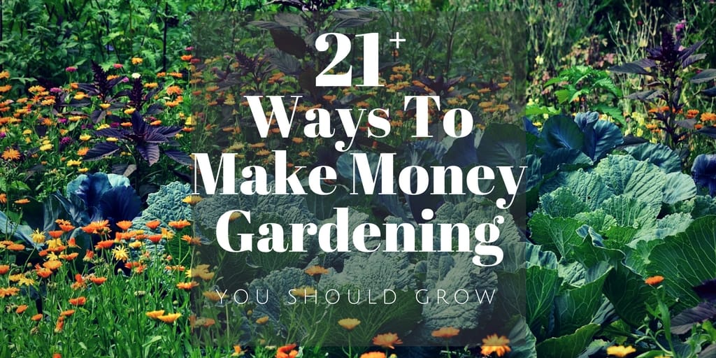 make money gardening 29 ideas to start earning now you should grow. Black Bedroom Furniture Sets. Home Design Ideas