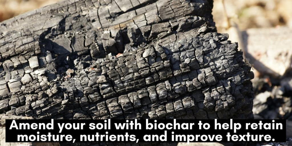 Gardening tips: Add biochar to your to improve the health and texture of your garden soil.