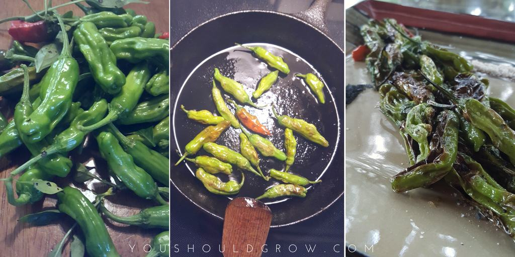 Blistered shishito peppers are an easy snack or appetizer that is sure to please.
