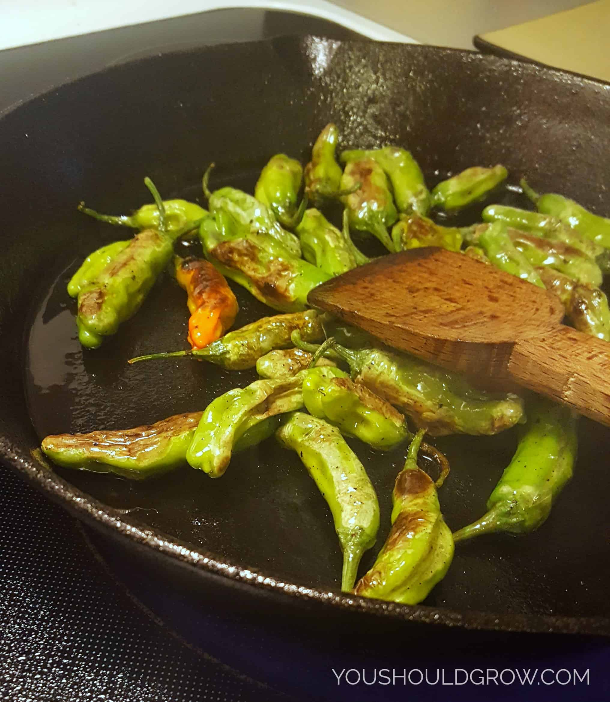 Cook whole shishito peppers over medium heat until their skin blisters.