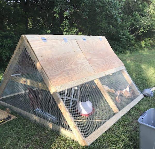 Simple a-frame chicken coop diy