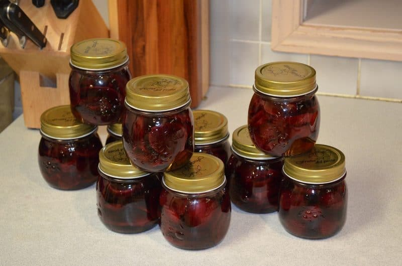 Surplus of pickled beets left over from canning at home.