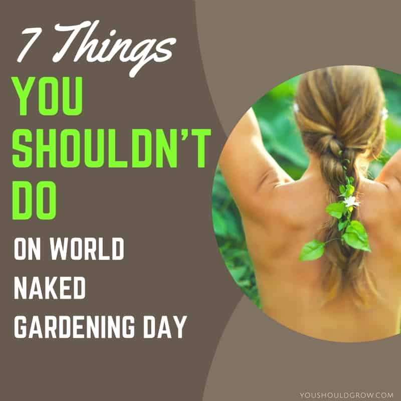 7 Things You Shouldn't Do On World Naked Gardening Day