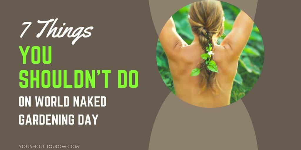 World nude day video agree