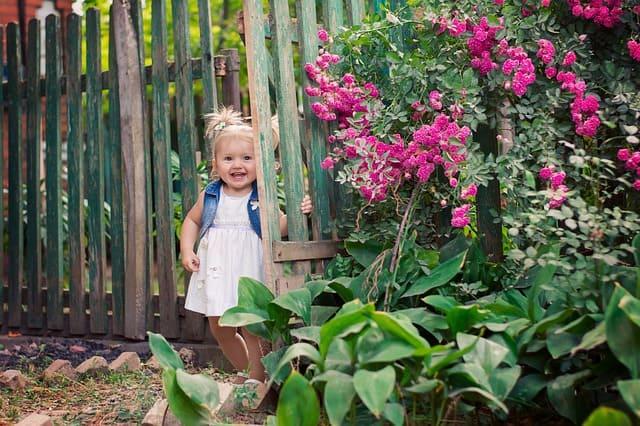 preschooler in a garden