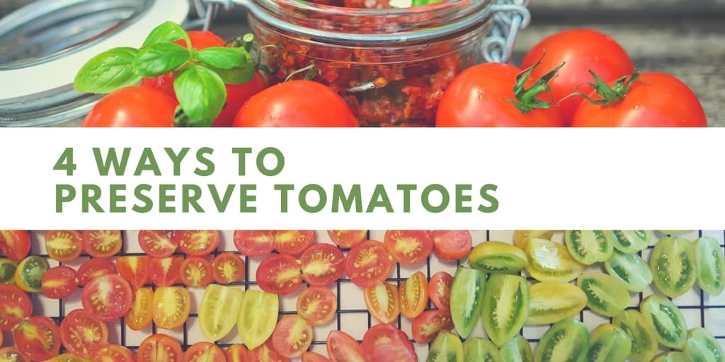 How To Preserve Tomatoes You Should Grow