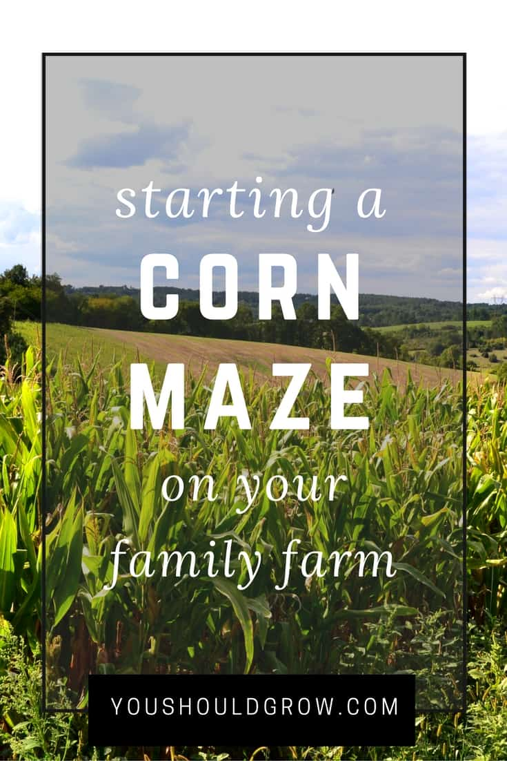 Starting a corn maze on your family farm? Read this first!
