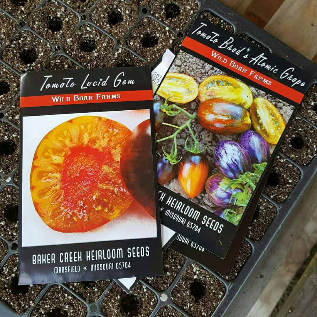 We love trying new varieties of tomatoes every year.