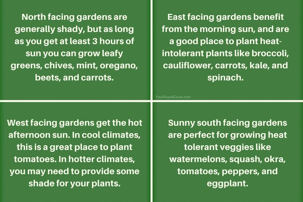 How to predict sun exposure using direction for garden planning